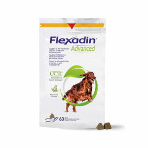 Flexadin advanced 60