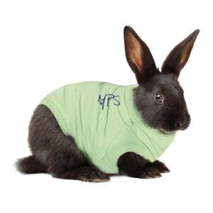 MPS konijn